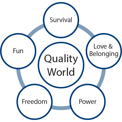 Choice Theory Quality World Diagram